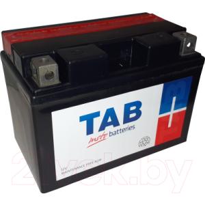 Мотоаккумулятор TAB AGM YTZ10-BS / 317515