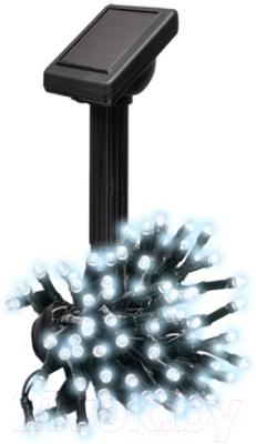 Светильник уличный Фаза SLR-G01- 50W / 5027282